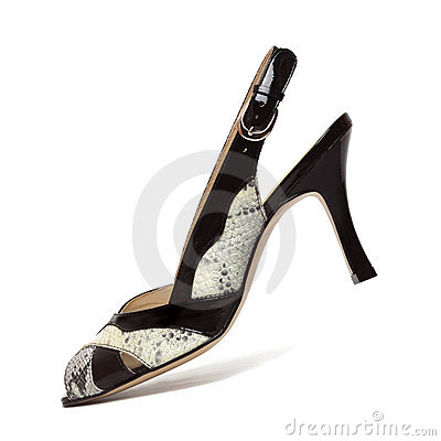 Elegance female shoes