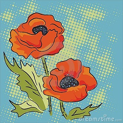 Elegance illustration with red poppies isolated