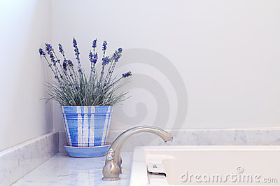 Elegancia del cuarto de baño