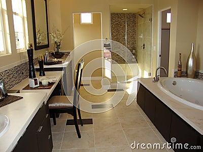 Elegant Bath Room