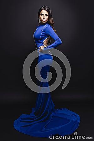 Free Elegant Brunette In Long Dress Royalty Free Stock Photos - 95638878