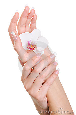 Elegant clean human hand with white flower on palm