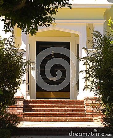 Elegant entrance 46
