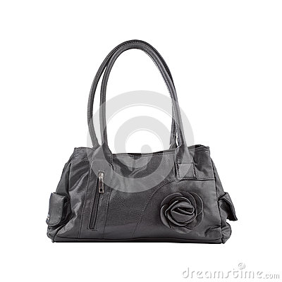 Elegant female bag