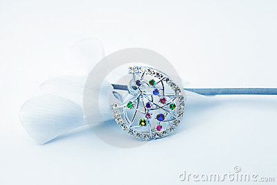 Elegant female jewelry and flower