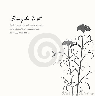 Elegant gray flower background with sample text
