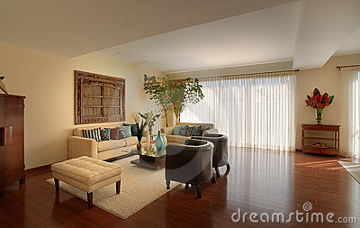 Elegant home: Living room