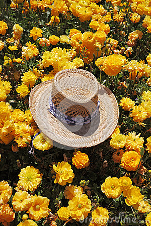 The elegant straw hat is left by the tourist