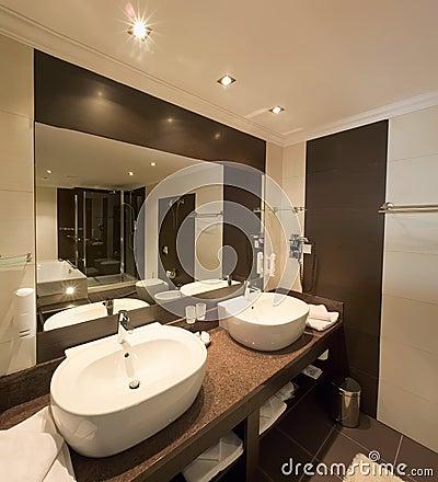 Elegant Washroom