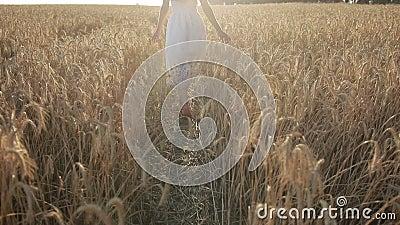 Elegant woman enjoying nature in sunset light stock video