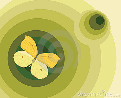 Element for design, illustration with butterfly