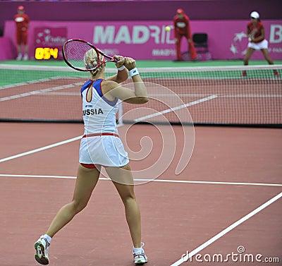 Free Elena Dementieva-Russia Royalty Free Stock Images - 8198589