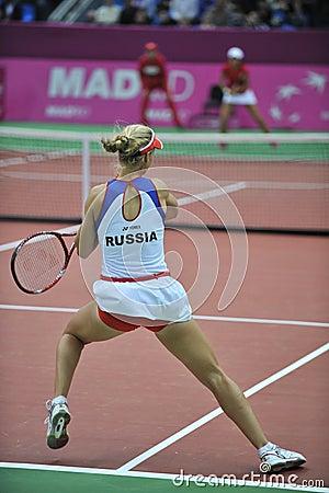 Free Elena Dementieva-Russia Royalty Free Stock Image - 8198646