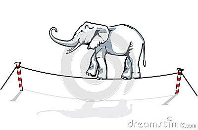 Elephant balancing