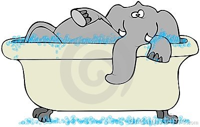 Elephant In A Bathtub