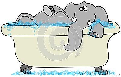 Elephant In A Bathtub