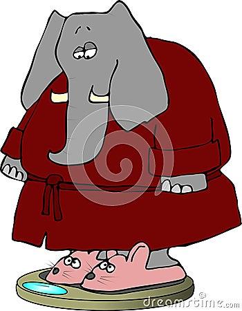 Elephant in Bunny Slippers