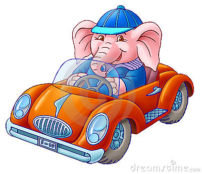 The elephant in the car