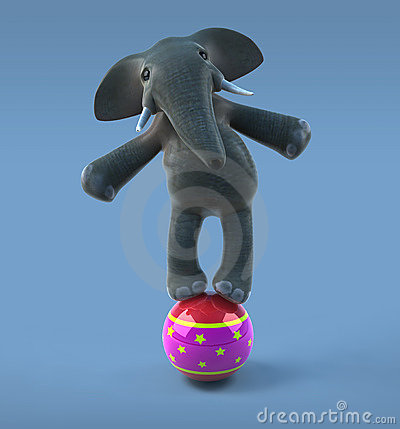 Elephant in a circus