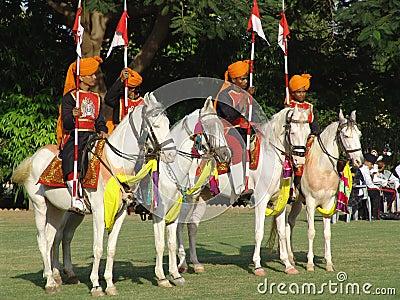 Elephant Festival, Jaipur, India Editorial Stock Photo