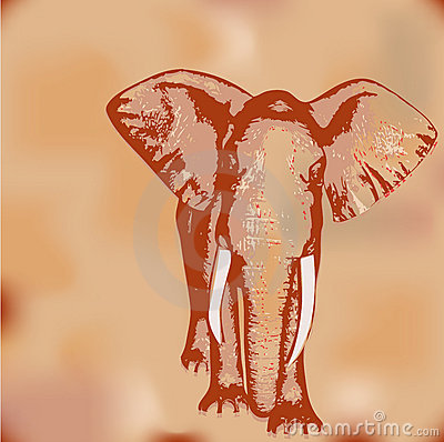 Elephant Grunge Background