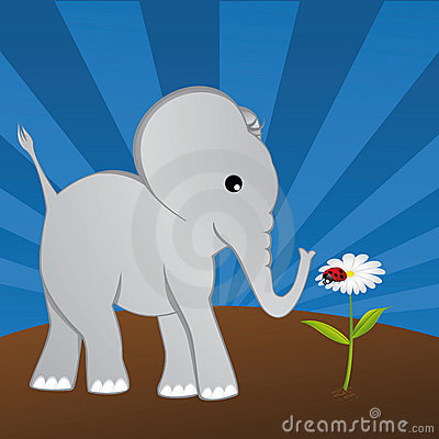 Elephant with ladybug on daisy