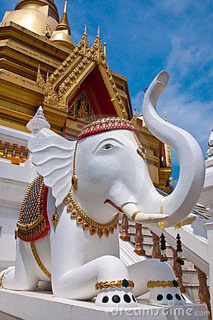 Elephant Molded