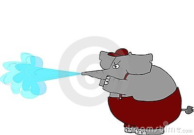 Elephant Pressure Washer