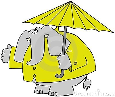 Elephant In A Raincoat