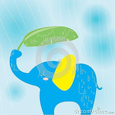 Elephant on a rainy day