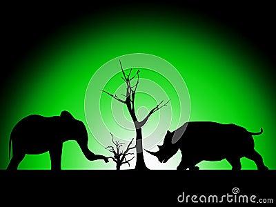 Elephant And Rhino Silhouette