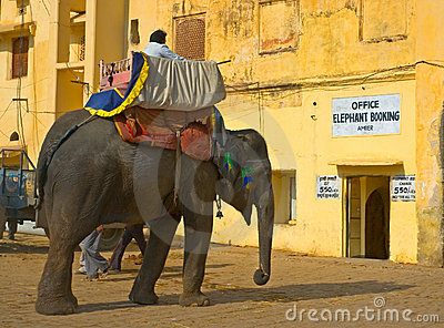 Elephant ride, Amber Fort, Jaipur, India