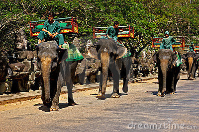 Elephant rides at Angkor Wat Editorial Photo