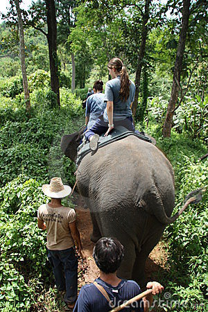 Elephant riding in Thailand Editorial Stock Photo