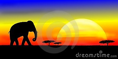 Elephant on savannah