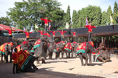 Elephant show in Nong Nooch tropical garden Editorial Photography