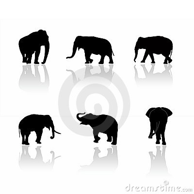 Free Elephant Silhouettes Royalty Free Stock Photo - 2312665