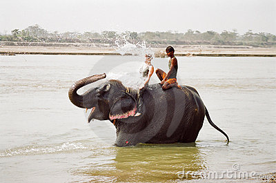 Elephant spalshing female tourist, Nepal Editorial Image