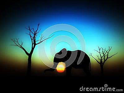 Elephant Sunrise 4