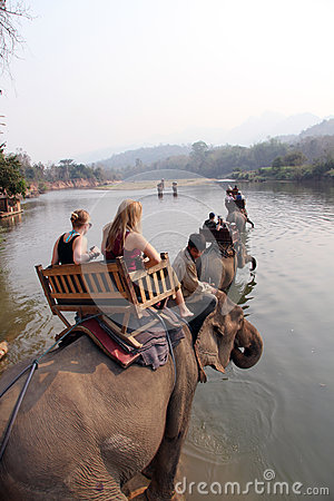 Elephant Trekking in Luang Prabang Laos Editorial Stock Image