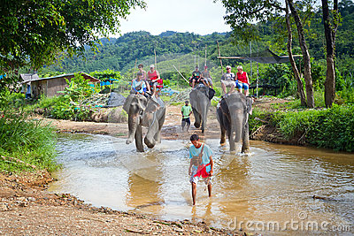 Elephant trekking in Thailand Editorial Image