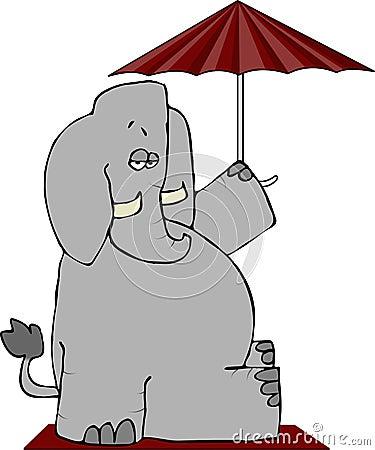 Elephant Under An Umbrella