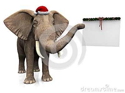 Elephant wearing Santa hat.