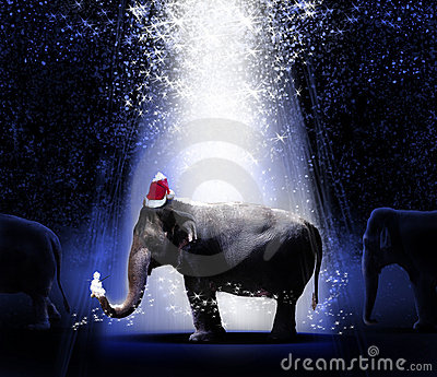 Elephants Christmas