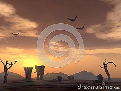 Elephants and eagles