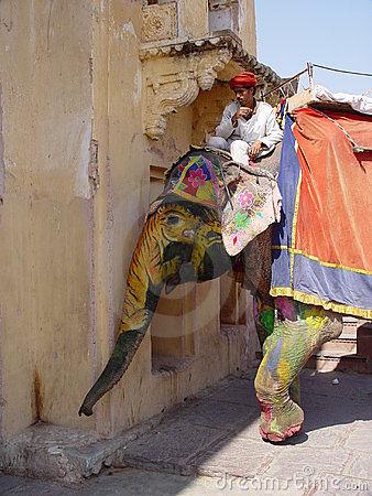 Free Elephants Of Amber Fort Royalty Free Stock Images - 866069