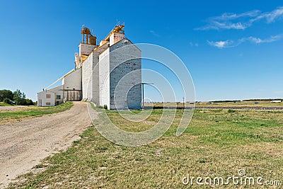 Elevador de grano