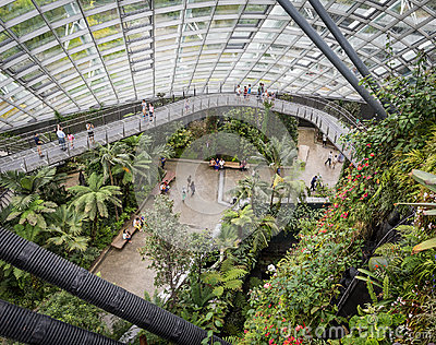 Elevated view of Cloud Forest, Singapore Editorial Photography