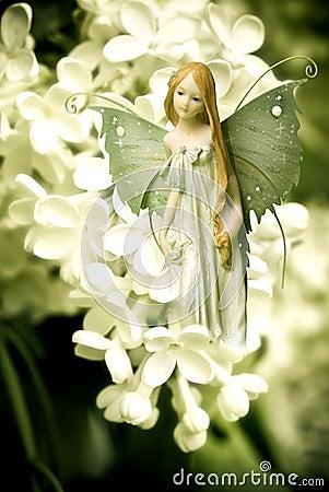 Free Elf Fairy Stock Image - 11131701