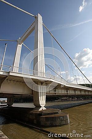 Elizabeth bridge  (in Budapest in Hungary)